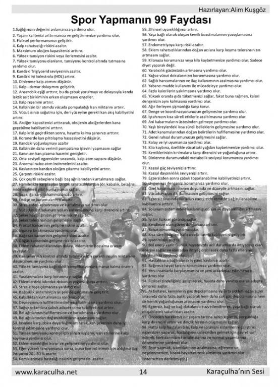 sayfa14