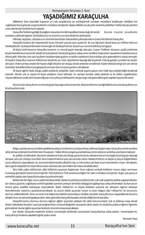 sayfa15