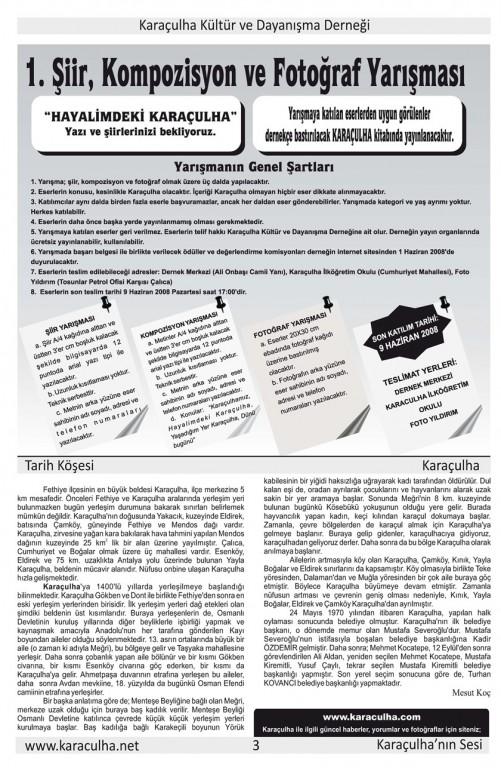 sayfa3